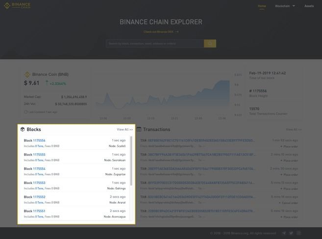 Binance Chain Explorer Guide