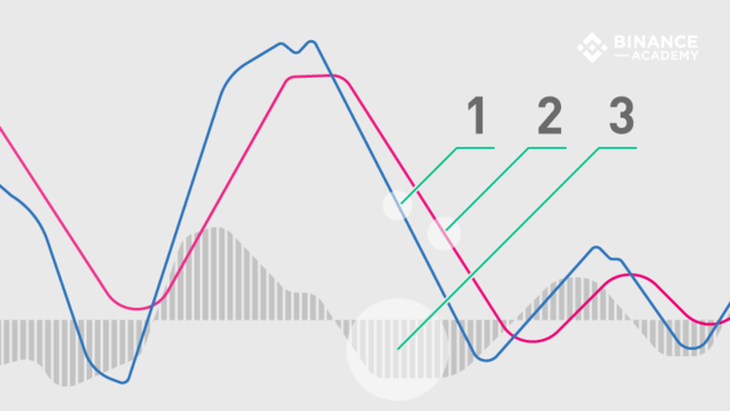 De MACD-indicator uitgelegd