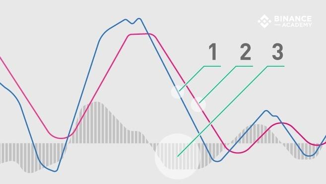 Wskaźnik MACD - Wytłumaczenie