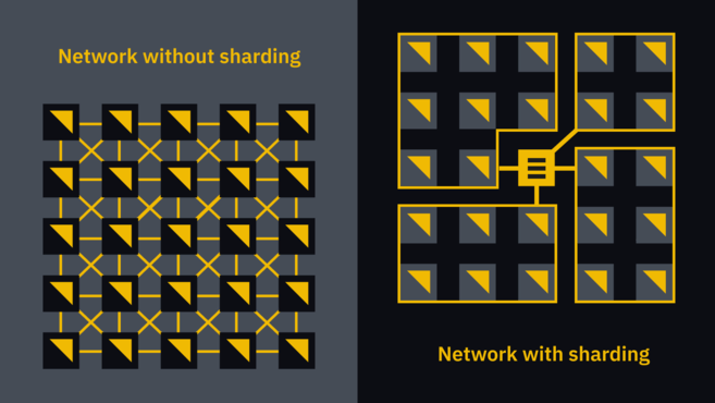 network without sharding vs the network with sharding