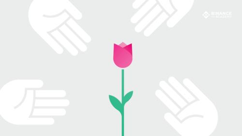 ¿Qué es la Tulipomanía?
