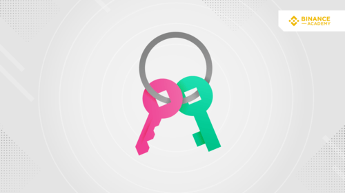 Wat is Public Key Cryptography?