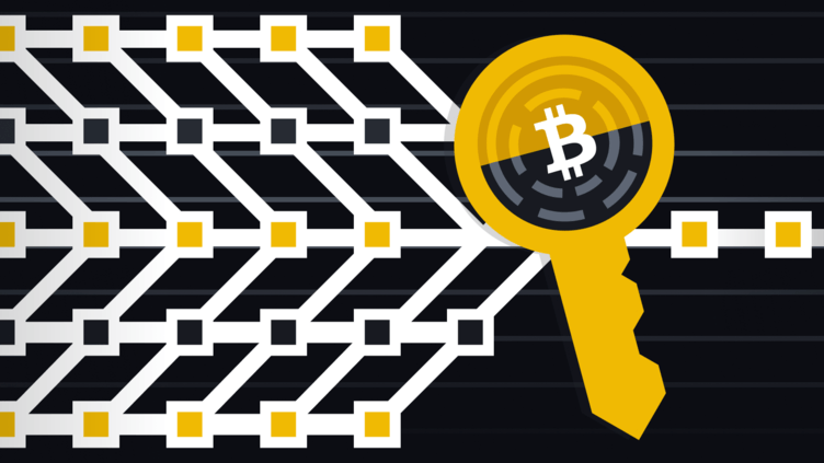 Apa Kaitan antara Schnorr Signature dengan Bitcoin?